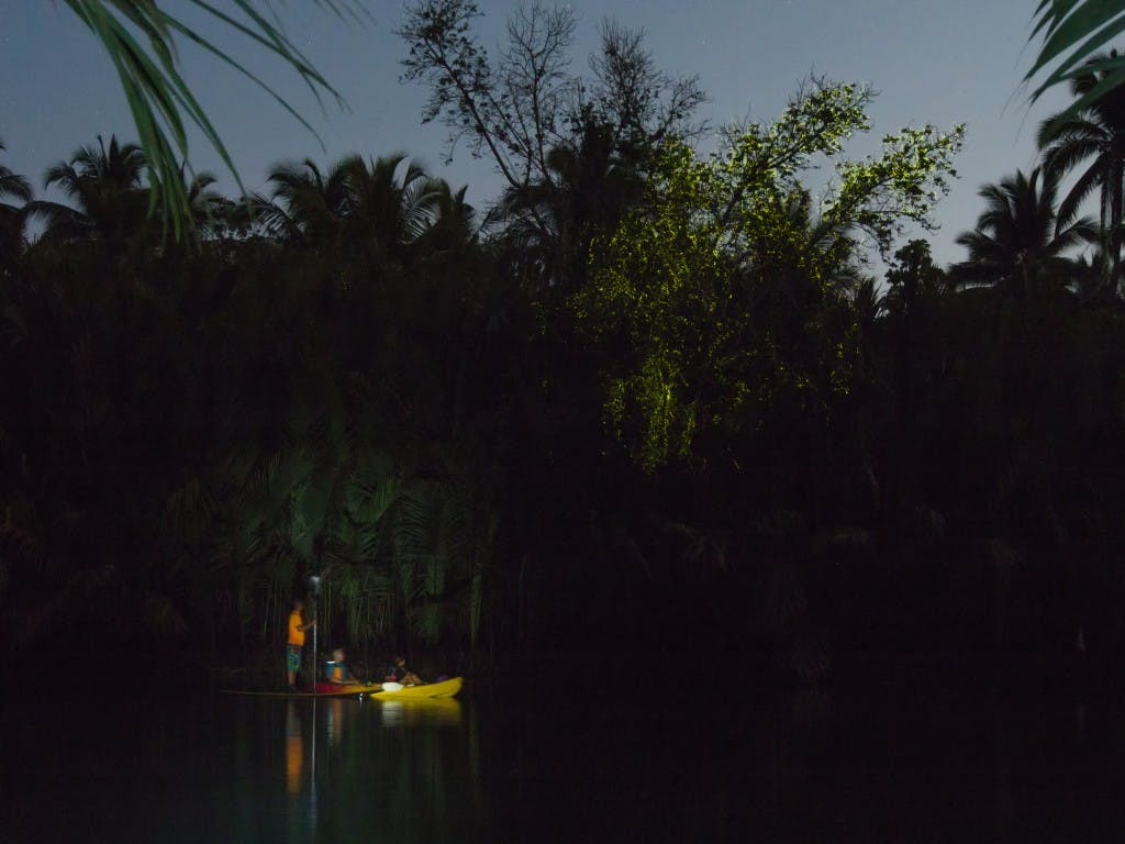 Time your kayak across Abatan River at about 9pm to catch the fireflies flashing their lights in a spectacular display