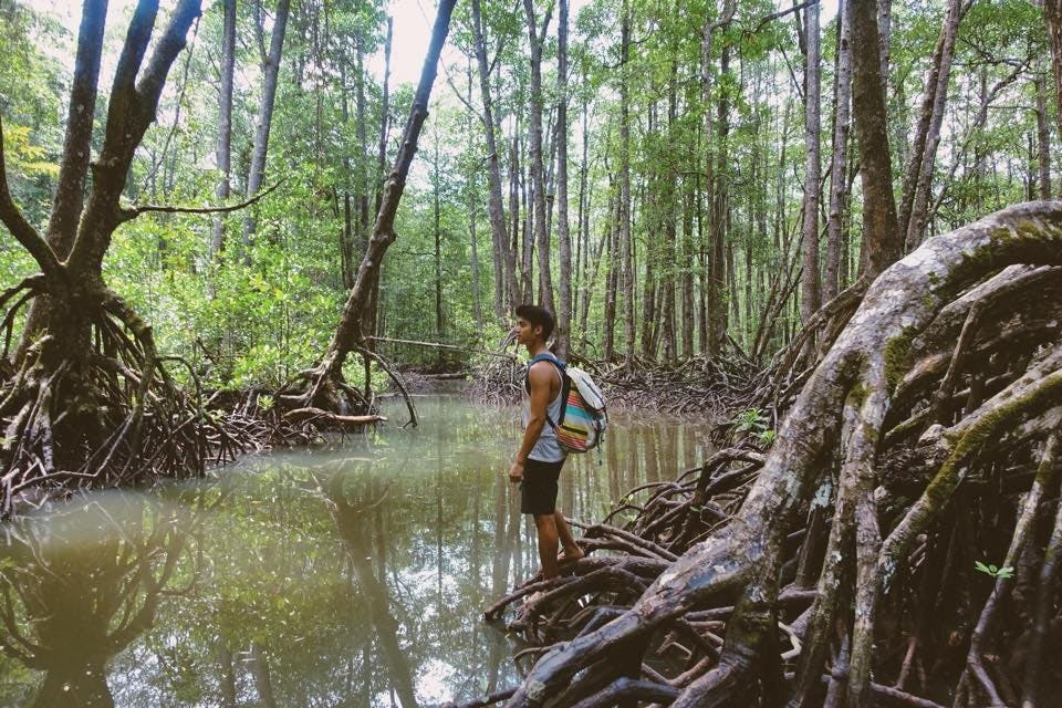 Into the wild. Mikael at a mangrove habitat in Puerto Princesa, Palawan