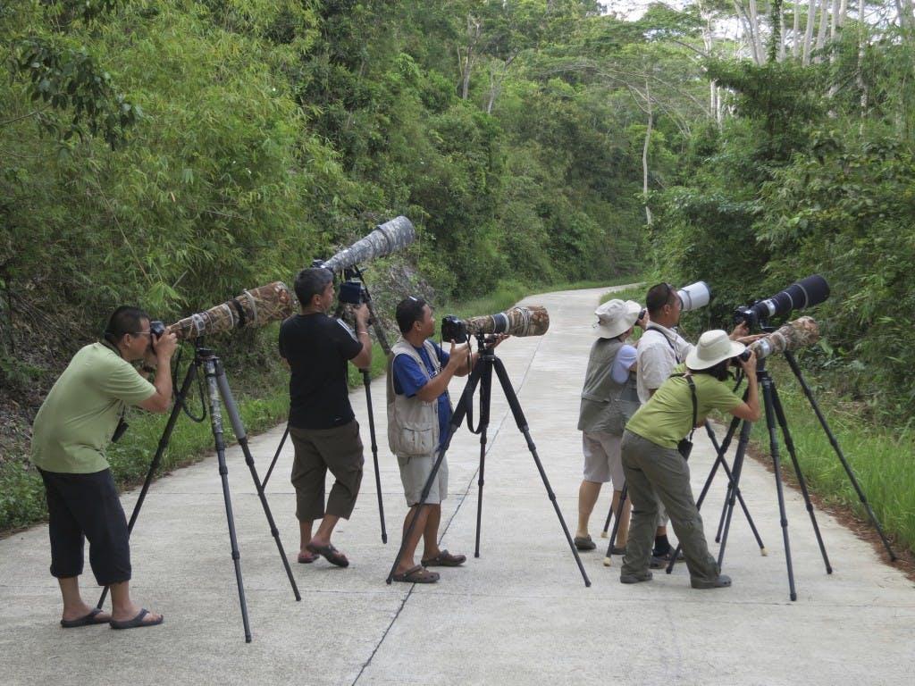 Not your everyday paparazzi: Birding enthusiasts on Sabang Road, Palawan