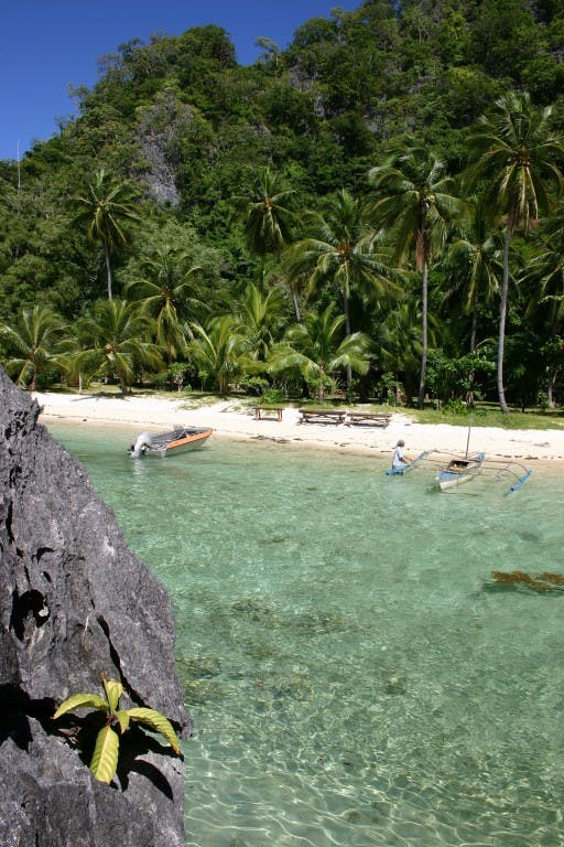Sangat Island: Coconut trees and crystal clear waters. Photo by Tootoots Leyesa