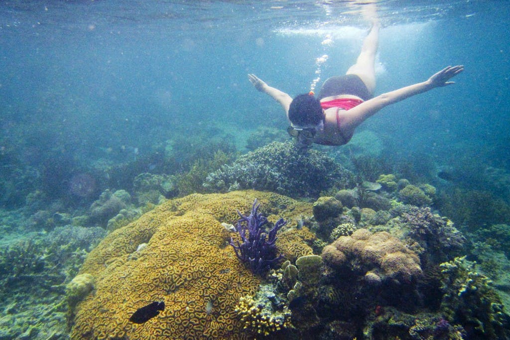 Snorkeling in Calamian in Palawan. Photo by Christian Sangoyo