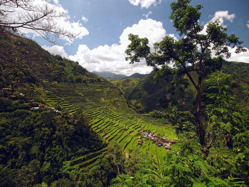 Batad, Ifugao. By Ferdz Decena