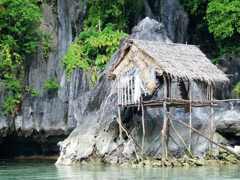 Tagbanua House